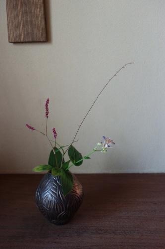 秋草を楽しむ 2_a0197730_20572595.jpg