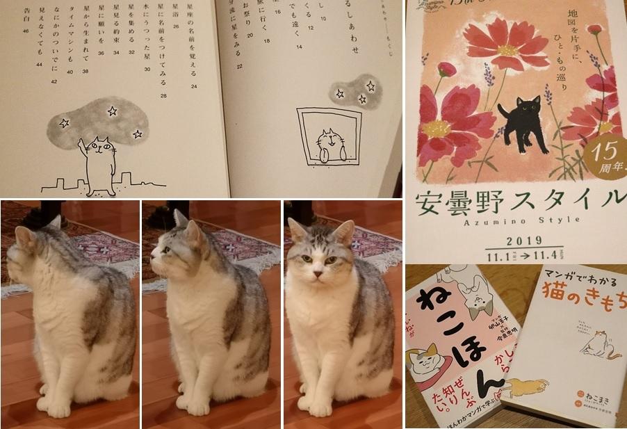 ネコとネコ本_a0212730_23372377.jpg