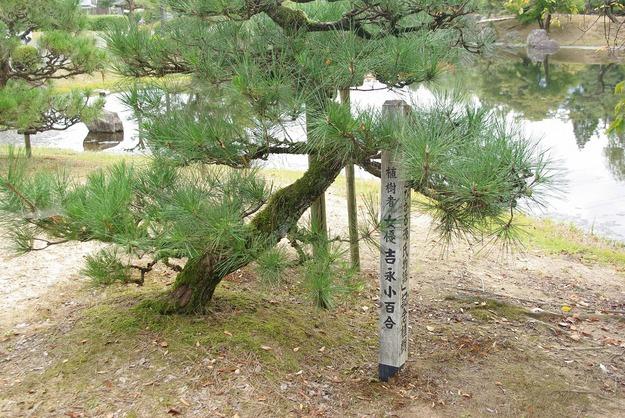 秋の福井の旅 紫式部公園_d0043136_19454968.jpg