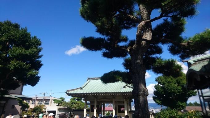 函館称名寺の屋根に葵紋。高田屋嘉兵衛の墓_b0106766_17463791.jpg
