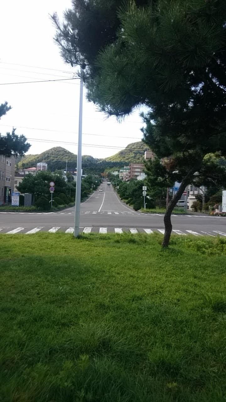 函館護国神社と護国神社坂_b0106766_19073266.jpg