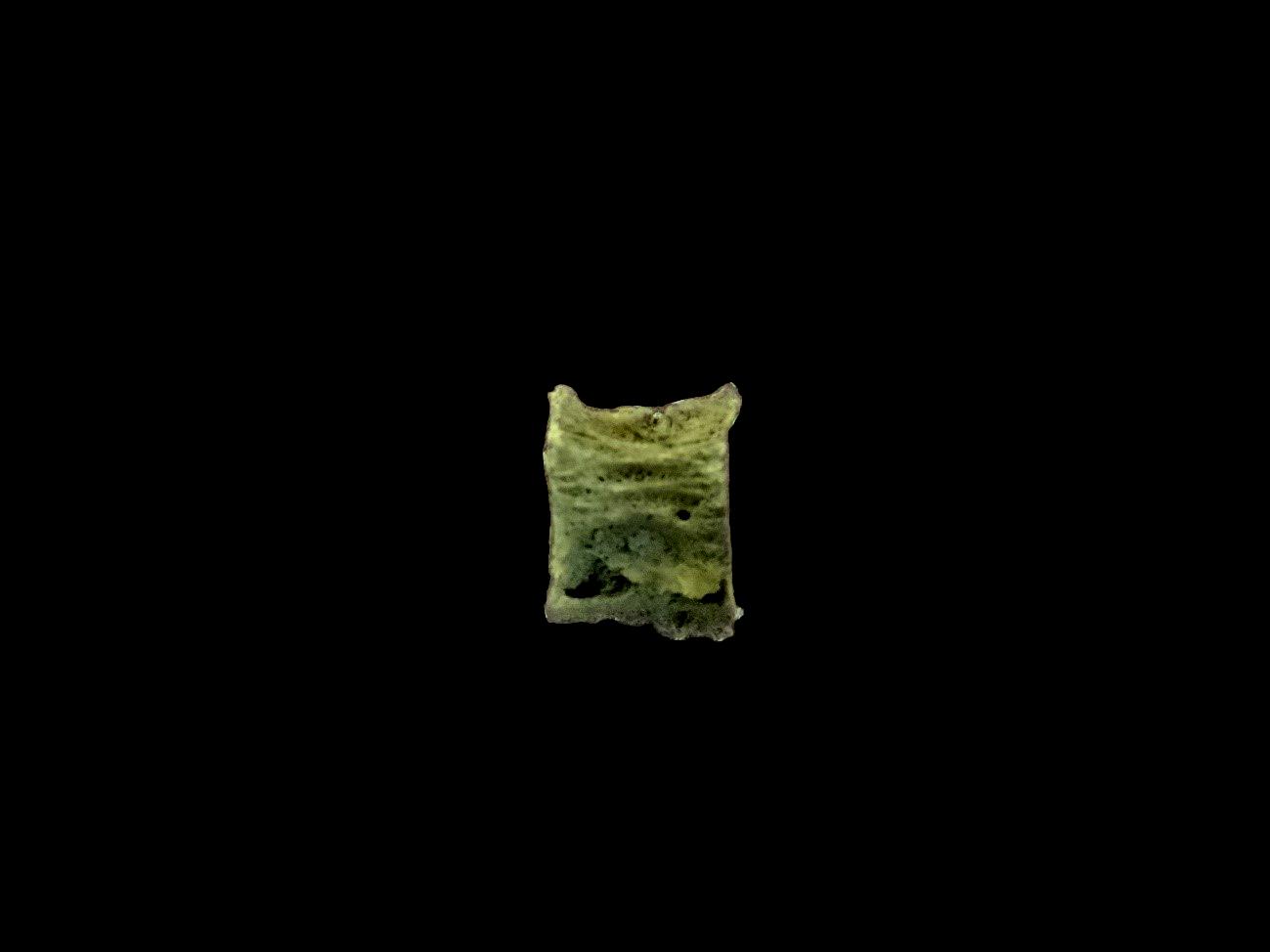 コラムリレー(第137回) 4千年前の食べ物を探しにスーパーへ_f0228071_17575243.jpg
