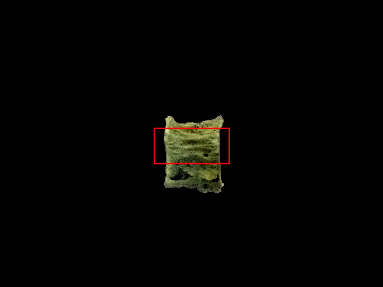 コラムリレー(第137回) 4千年前の食べ物を探しにスーパーへ_f0228071_18051618.jpg
