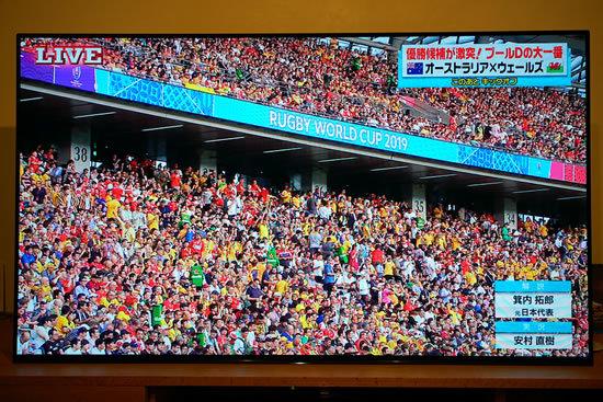 2019.9.29 RUGBY WORLD CUP 2019 JAPAN【プールD】オーストラリア vs ウェールズ@東京 行ってきた☆_a0353681_20012053.jpg