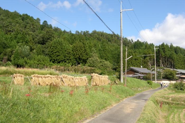 京都一周トレイル 北山西部コース 前半_c0057390_16471236.jpg