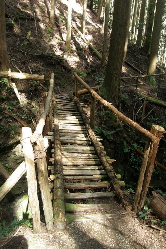 京都一周トレイル 北山西部コース 前半_c0057390_16473088.jpg