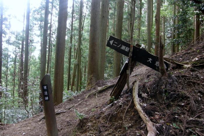 京都一周トレイル 北山西部コース 前半_c0057390_16484461.jpg