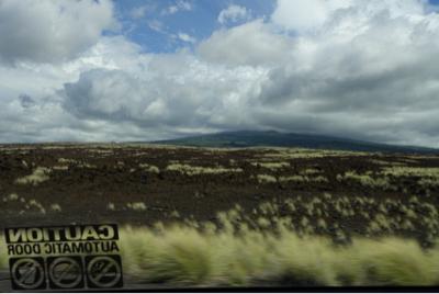 Hawaii_a0283796_16262570.jpg