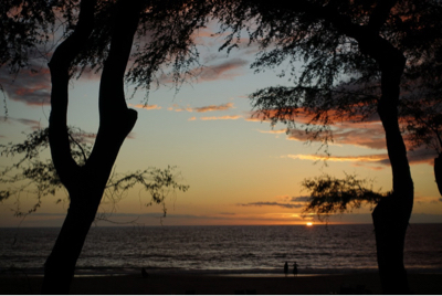 Hawaii_a0283796_16262921.jpg