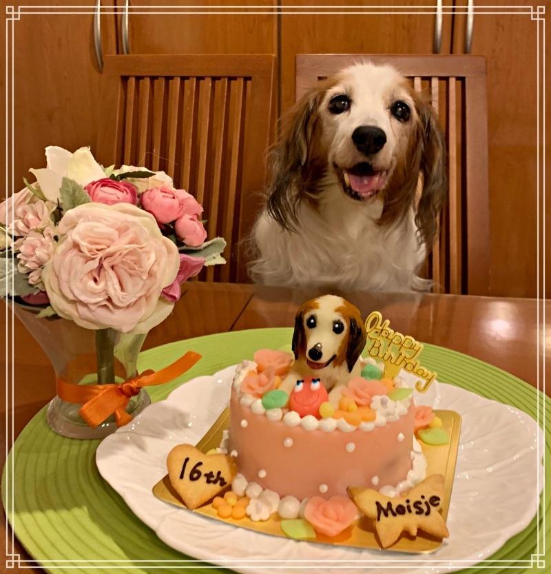 16th Birthday♪_c0065512_18315358.jpg