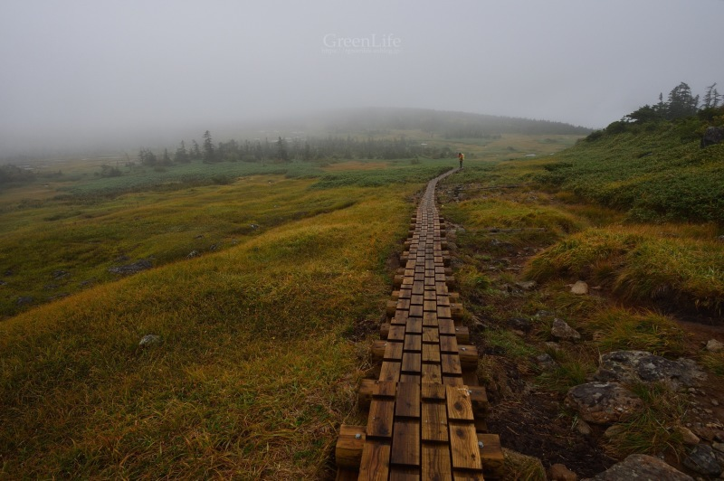 霧中散歩_f0321522_09534503.jpg