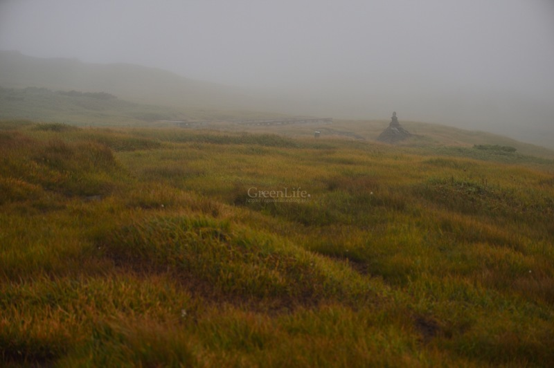 霧中散歩_f0321522_10013493.jpg