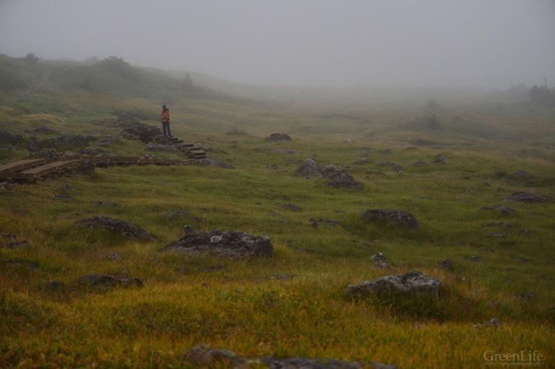霧中散歩_f0321522_10055736.jpg