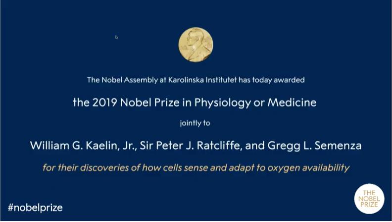 2019年度ノーベル生理医学賞は?:米英の3人セメンザ、ラトクリフ、ケーリンへ!_a0386130_18330706.png
