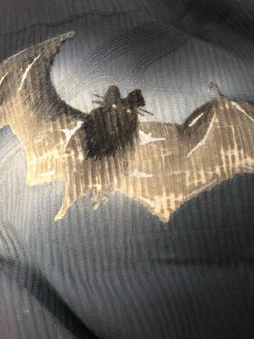 闇夜の蝙蝠_f0344931_23474167.jpg