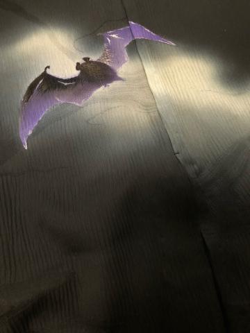 闇夜の蝙蝠_f0344931_23495450.jpg