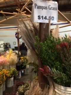 OC Wholesale Flowers の花に圧倒される_e0350971_08065724.jpg