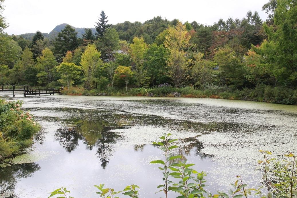 秋のレイクガーデン ~長野・軽井沢~_a0107574_19130265.jpg