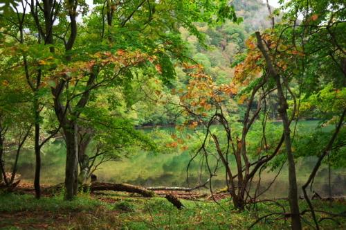 奥日光 湯ノ湖の紅葉の始まり_a0263109_10542873.jpg