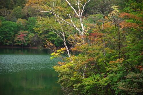 奥日光 湯ノ湖の紅葉の始まり_a0263109_10542928.jpg