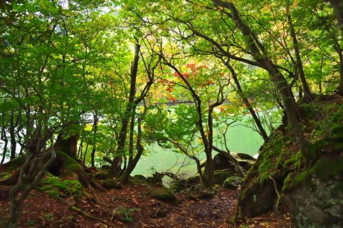 奥日光 湯ノ湖の紅葉の始まり_a0263109_10543060.jpg