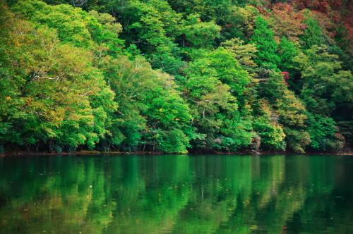 奥日光 湯ノ湖の紅葉の始まり_a0263109_10545560.jpg