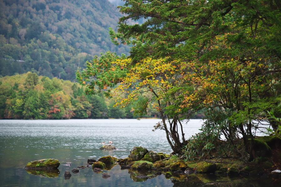 奥日光 湯ノ湖の紅葉の始まり_a0263109_10545569.jpg