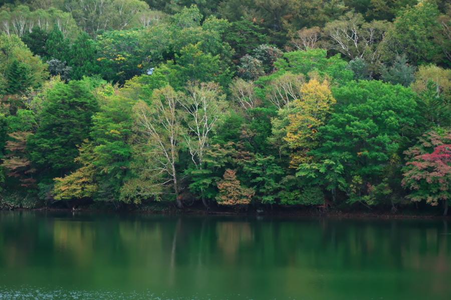奥日光 湯ノ湖の紅葉の始まり_a0263109_10545604.jpg