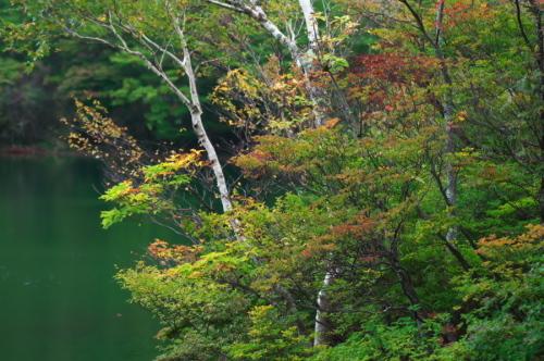 奥日光 湯ノ湖の紅葉の始まり_a0263109_10545668.jpg