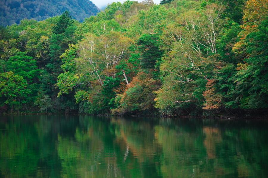 奥日光 湯ノ湖の紅葉の始まり_a0263109_10551748.jpg
