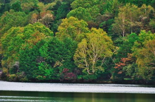 奥日光 湯ノ湖の紅葉の始まり_a0263109_10551785.jpg