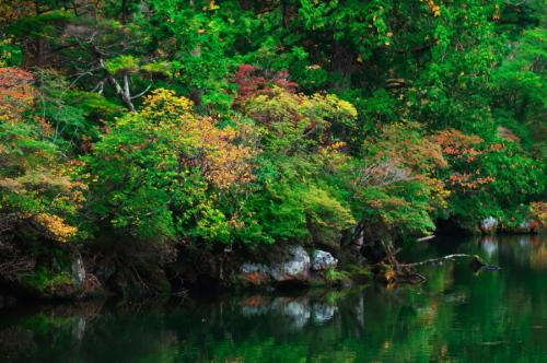 奥日光 湯ノ湖の紅葉の始まり_a0263109_10551809.jpg