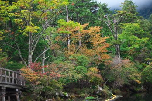 奥日光 湯ノ湖の紅葉の始まり_a0263109_10551814.jpg