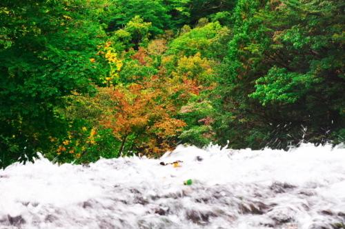 奥日光 湯ノ湖の紅葉の始まり_a0263109_10551820.jpg