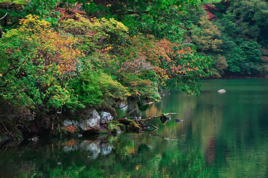 奥日光 湯ノ湖の紅葉の始まり_a0263109_10551847.jpg