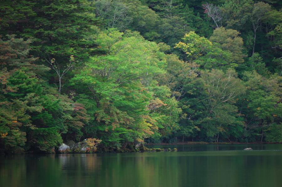 奥日光 湯ノ湖の紅葉の始まり_a0263109_10554363.jpg