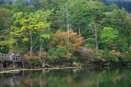 奥日光 湯ノ湖の紅葉の始まり_a0263109_10554465.jpg