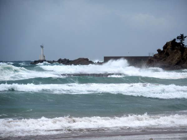 丹後半島めぐり3 丹後の海岸とコウノトリと出石城_e0048413_21100775.jpg