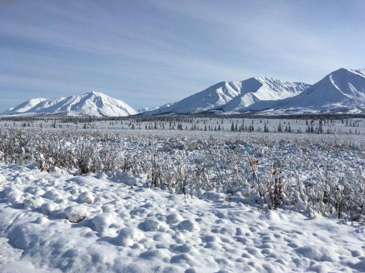 雪景色_b0135948_13095890.jpg