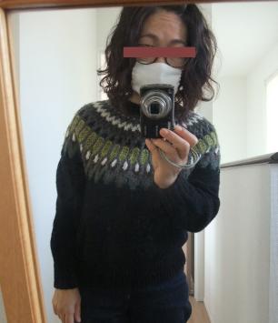 去年作り始めたセーターが完成していました。_e0031249_12360890.png