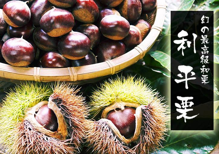 熊本県菊池市産、無農薬、無化学肥料で育てた、栗の王様『利平栗』今年(令和元年度)も完売御礼!_a0254656_17002545.jpg