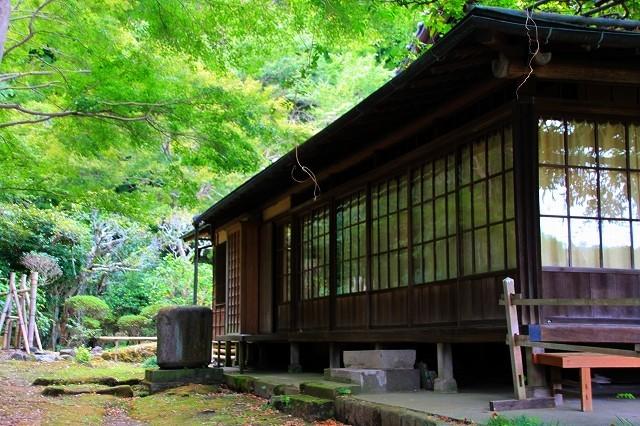 鎌倉の秋の花 英勝寺の芒_f0374092_18550697.jpg