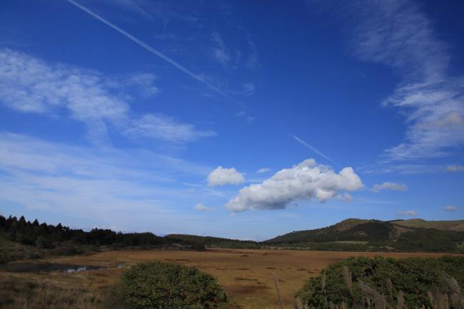 八島湿原③ 秋空に飛行機雲_a0357206_20064943.jpg