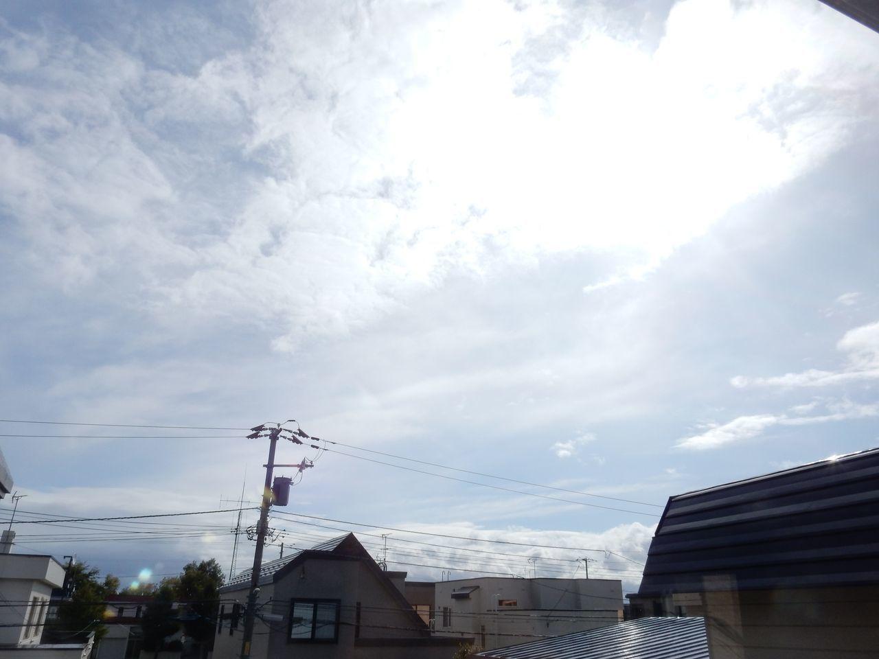 朝寒く、昼もそれなりに寒く_c0025115_21562520.jpg