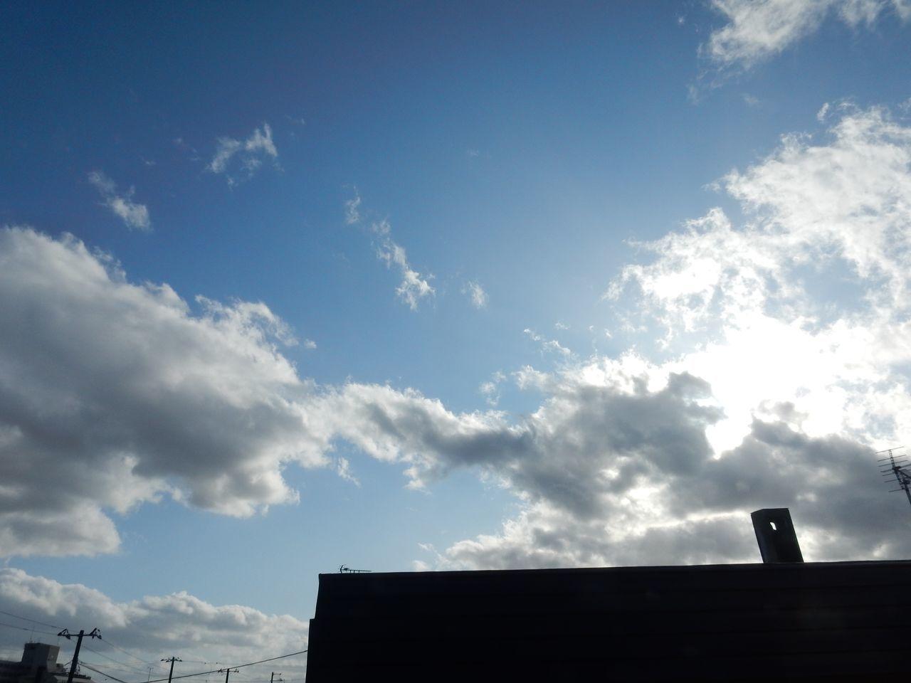 朝寒く、昼もそれなりに寒く_c0025115_21591129.jpg