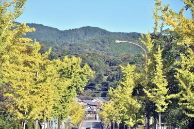 塚穴山古墳と石舞台_a0237937_23465589.jpg
