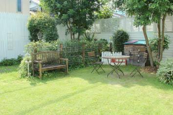 10月の芝生*_a0184348_13071106.jpg