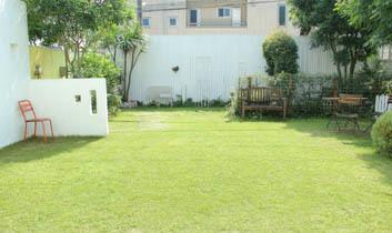 10月の芝生*_a0184348_13072646.jpg