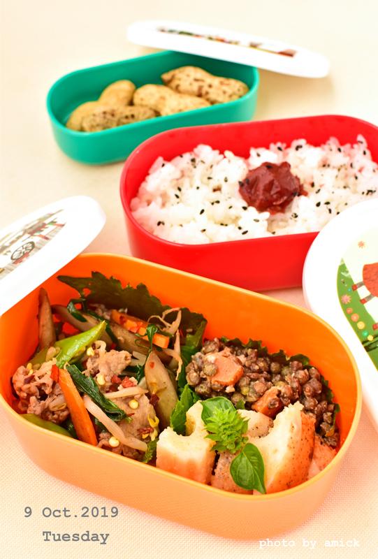 10月13日 日曜日 冷凍ごはんを美味しく食べる_b0288550_14420264.jpg