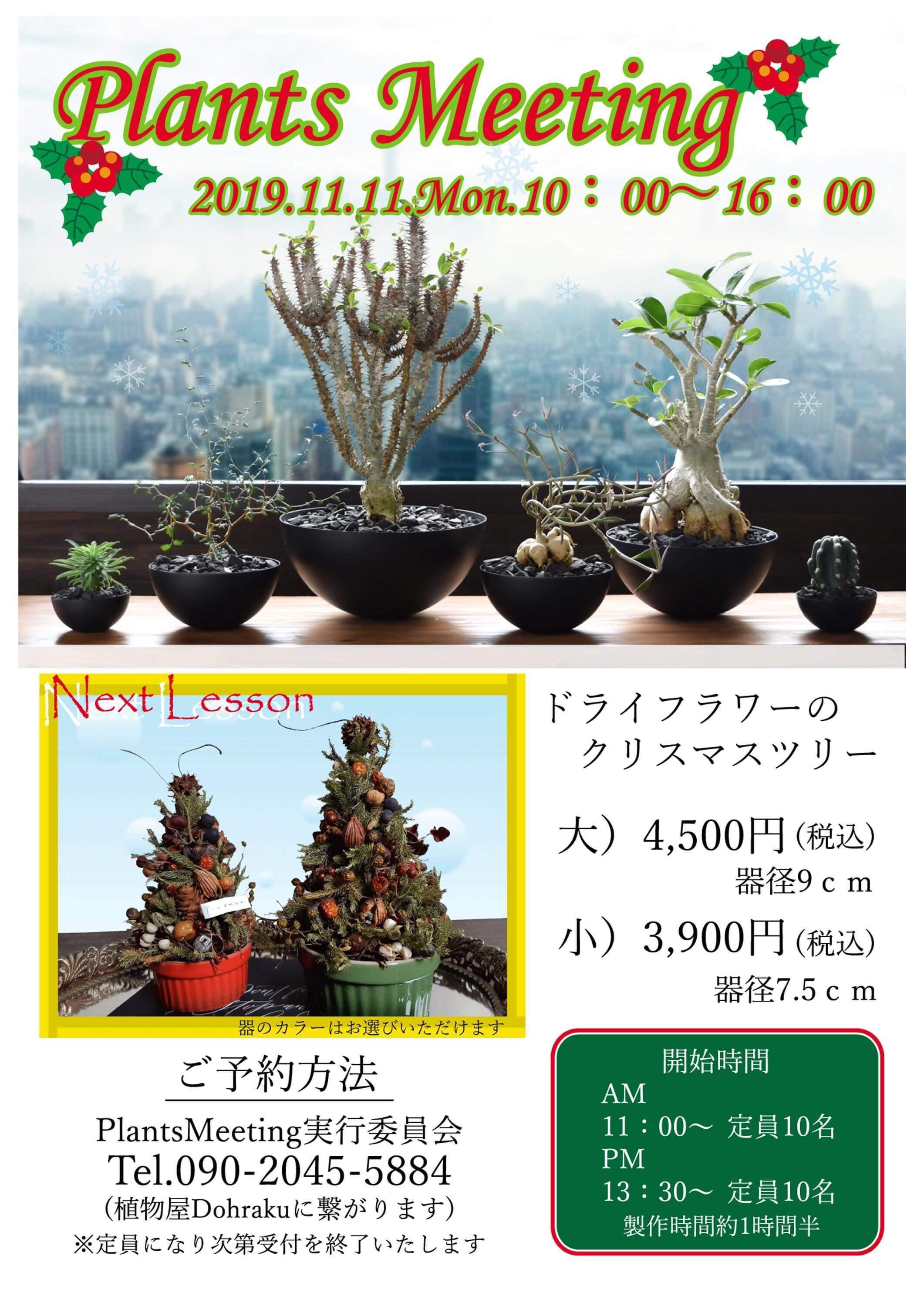 小さなクリスマスツリーを作りましょう♪_a0243983_08252654.jpeg